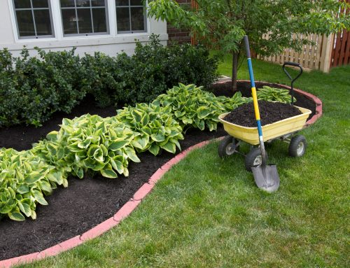 How Springtime Mulch Can Lead to Wood-Destroying Insect Damage